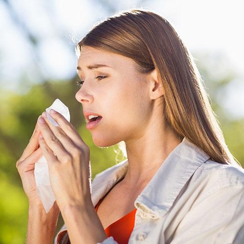 che cos'è l'allergia all'olivo