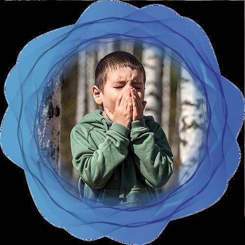 i sintomi allergia betulacee lofarma