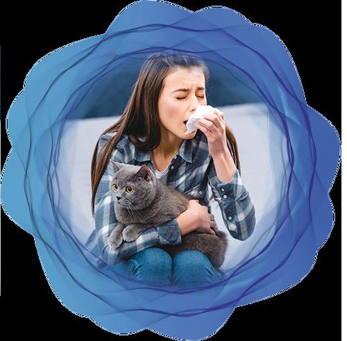 i sintomi più comuni allergia pelo del gatto lofarma